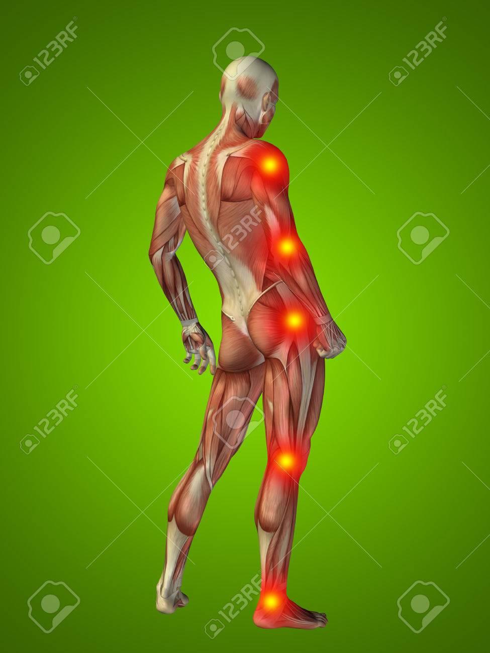 Conceptual Cuerpo Del Hombre Anatomía Humana En 3D Dolor En Las ...