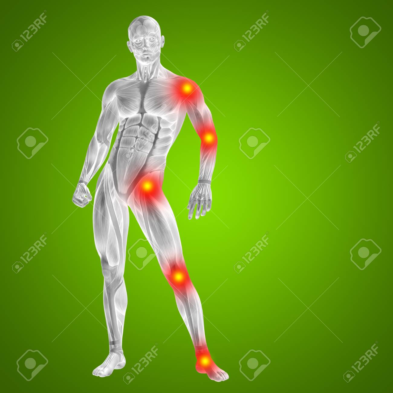 Conceptual 3D Human Man Anatomy Joint Pain Body On Green Background ...