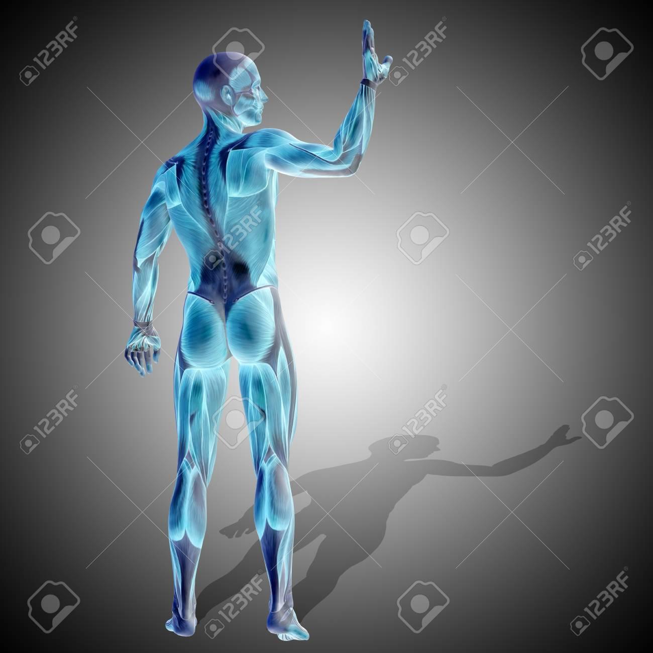 Famoso Grises Anatomía S06e23 Componente - Anatomía de Las ...