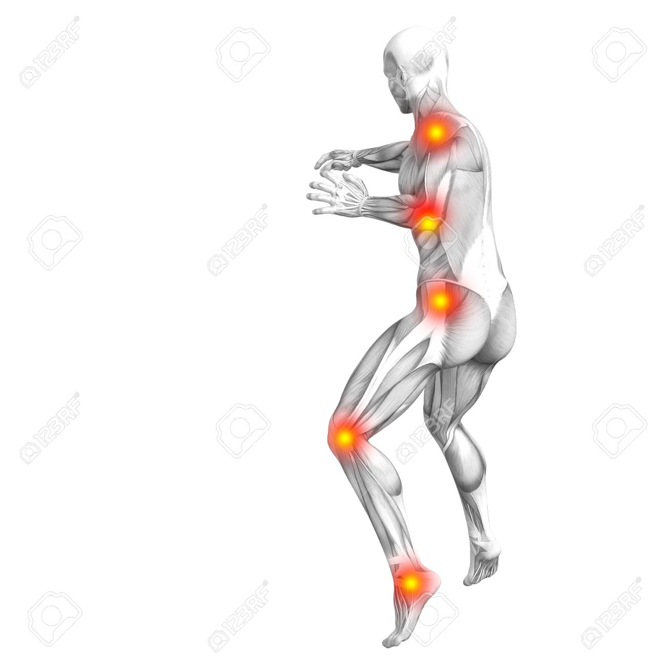 Fantastisch Muskeln Des Daumens Anatomie Zeitgenössisch - Anatomie ...