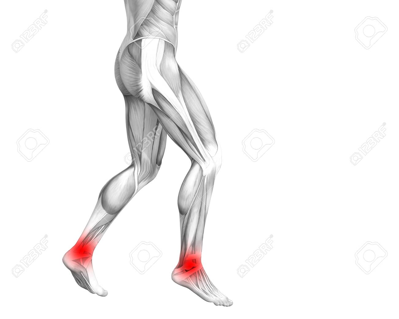 Conceptual Ankle Human Anatomy With Red Hot Spot Inflammation