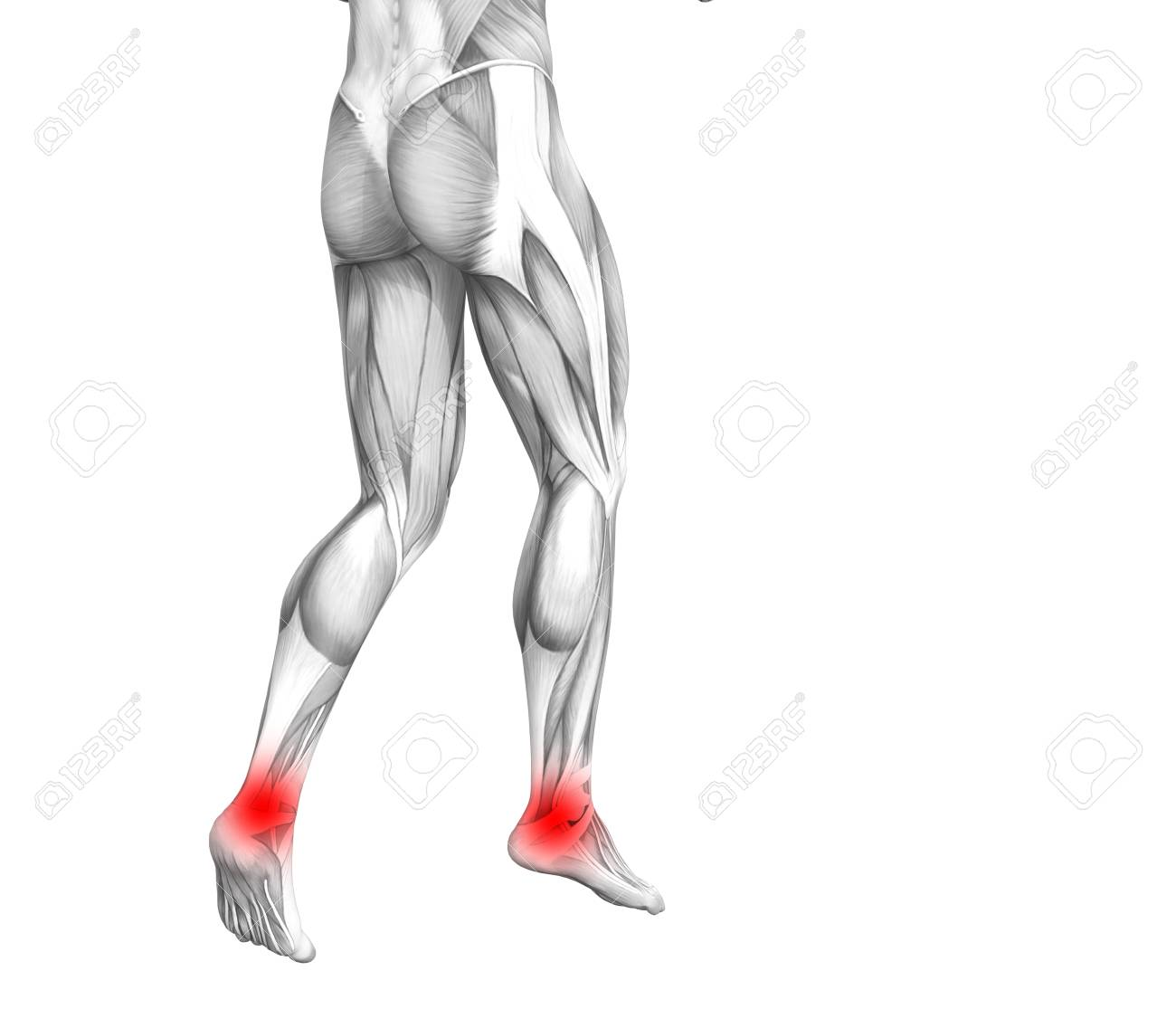Conceptual Ankle Human Anatomy With Red Hot Spot Inflammation Or