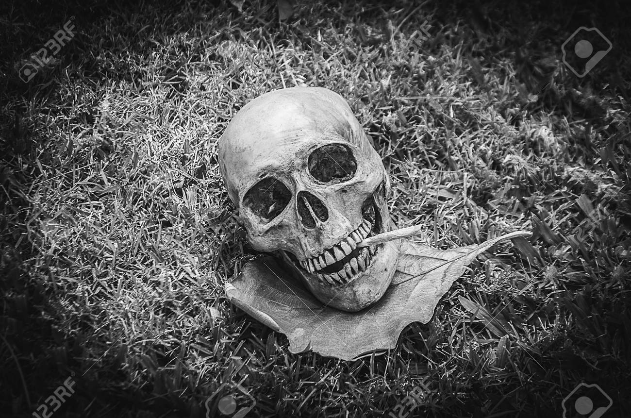 Human skull smoking the cigarette on the grass background