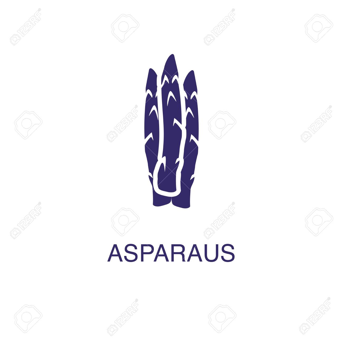 Asparagus element in flat simple style on white background. Asparagus icon, with text name concept template - 134450345