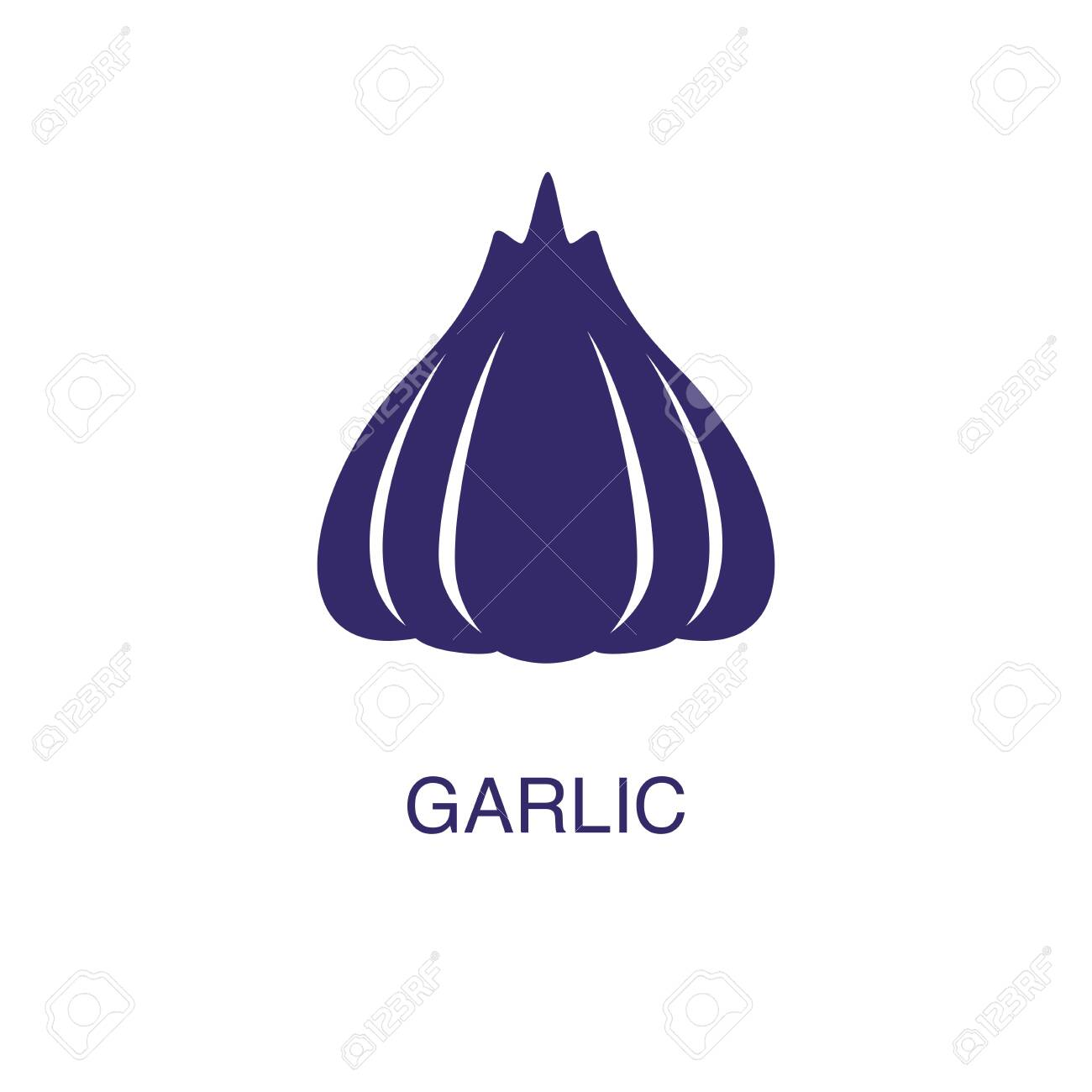 Garlic element in flat simple style on white background. Garlic icon, with text name concept template - 134450456