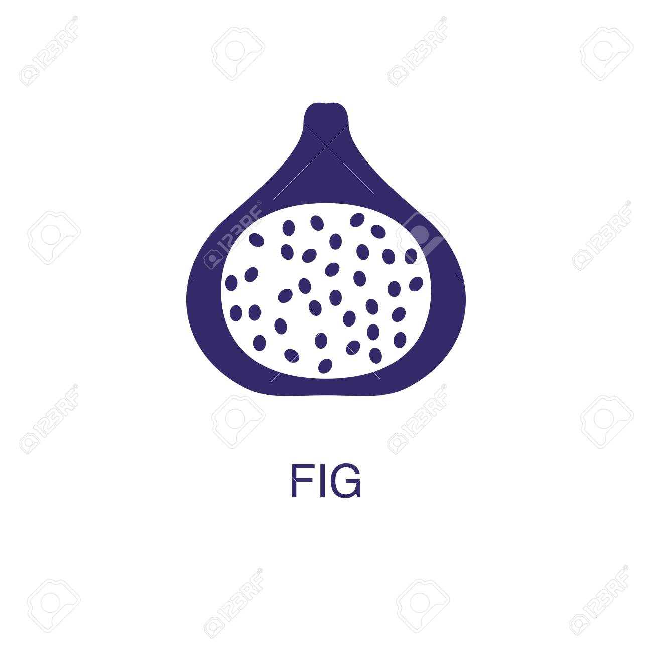 Fig element in flat simple style on white background. Fig icon, with text name concept template - 134450486
