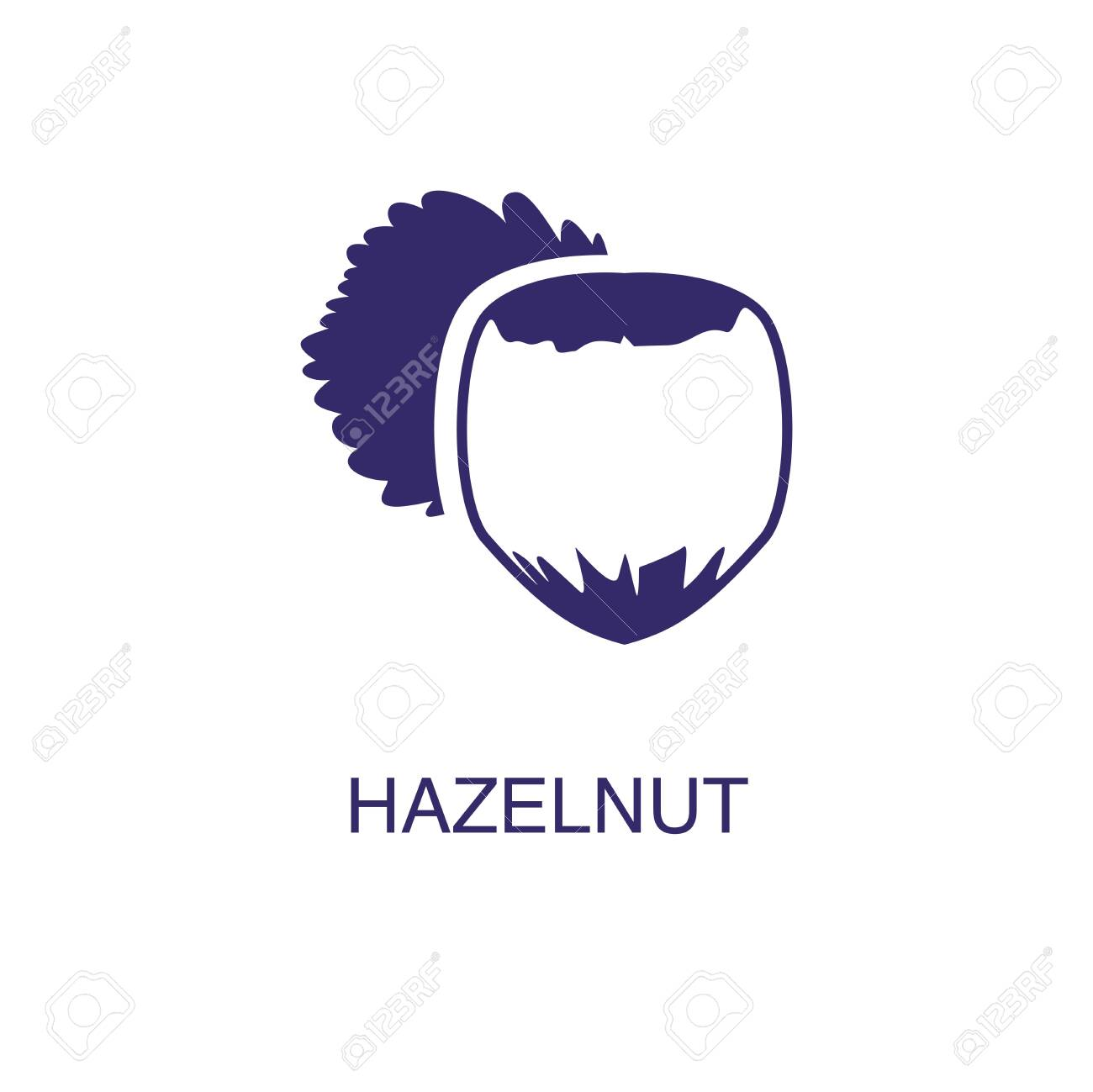 Hazelnut element in flat simple style on white background. Hazelnut icon, with text name concept template - 134450496