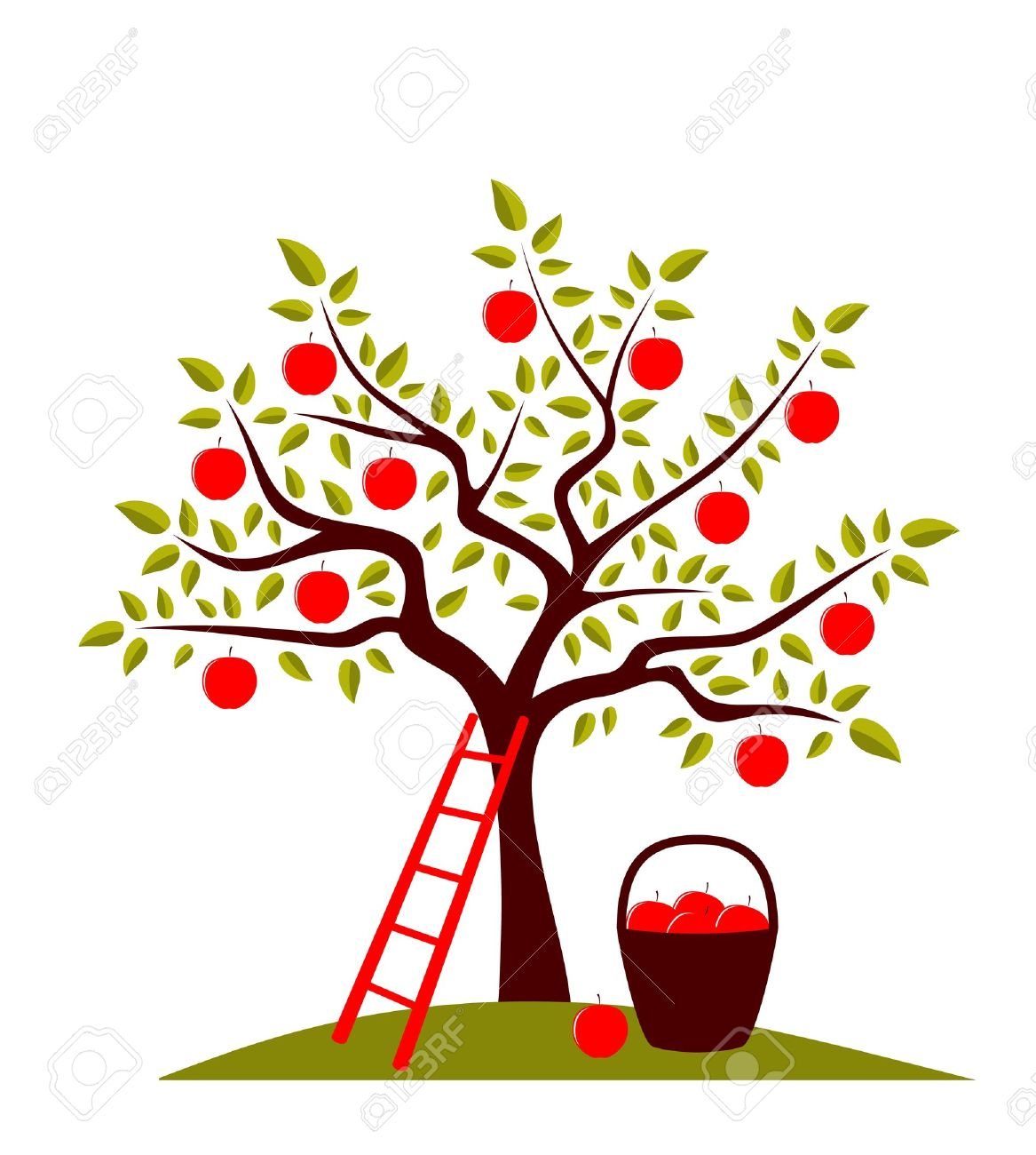 vector apple tree, ladder and basket of apples Stock Vector - 8802018