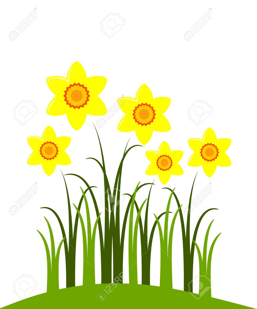vector abstract narcissuses on white background Stock Vector - 8911238