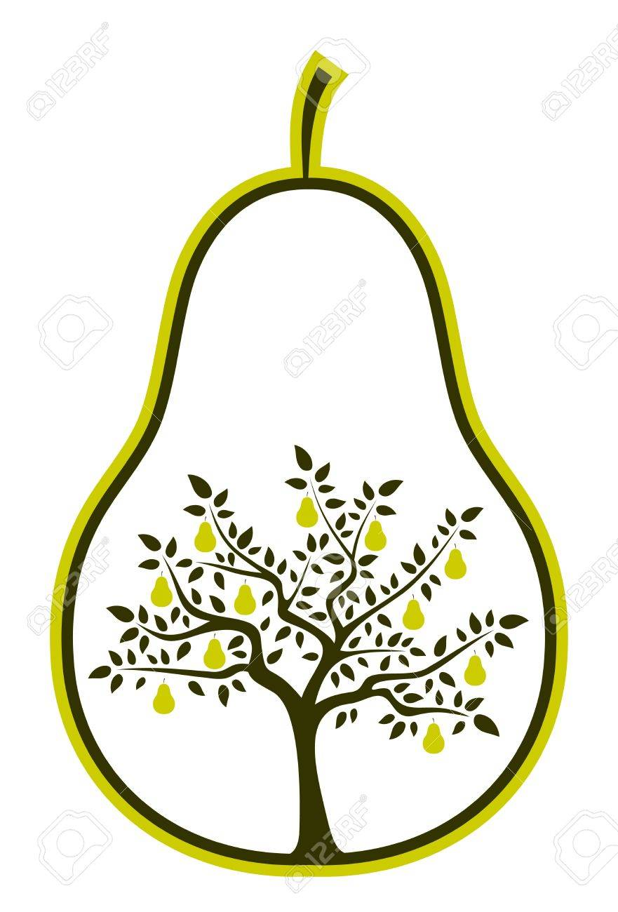 vector pear tree in pear on white background Stock Vector - 9059652