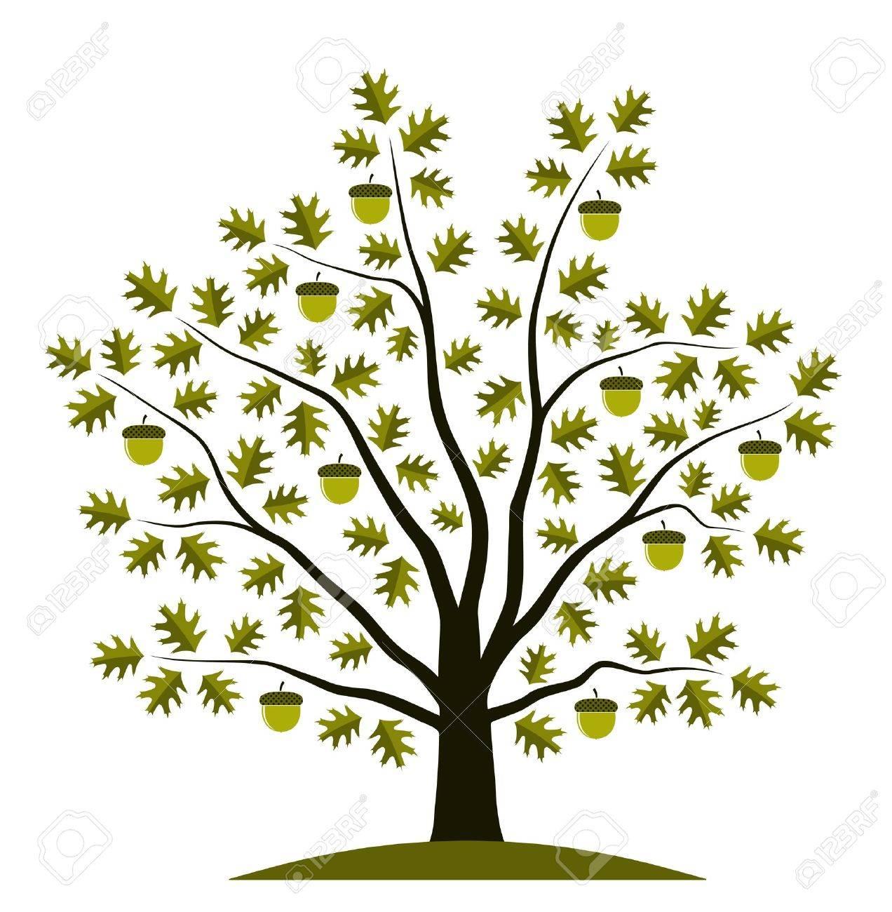oak tree on white background Stock Vector - 9339574