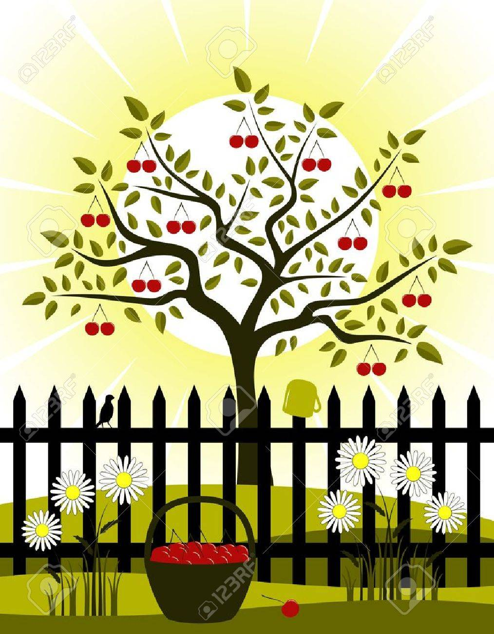 cherry tree and picket fence with daisies Stock Vector - 12013142