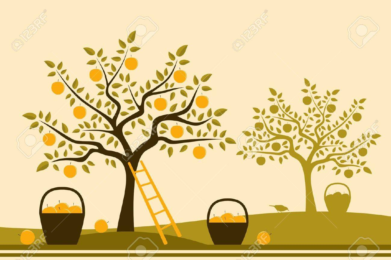 vector baskets of apples in apple orchard Stock Vector - 15491314