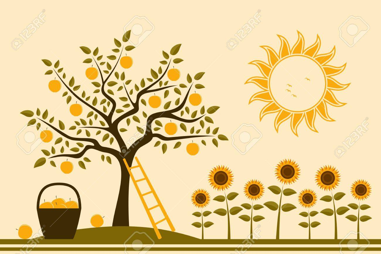 apple tree, basket of apples and sunflowers Stock Vector - 15776012