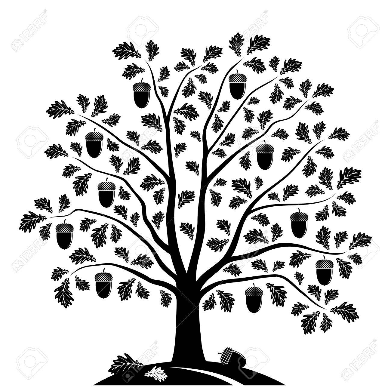 Vector Oak Tree Isolated On White Background Royalty Free Cliparts
