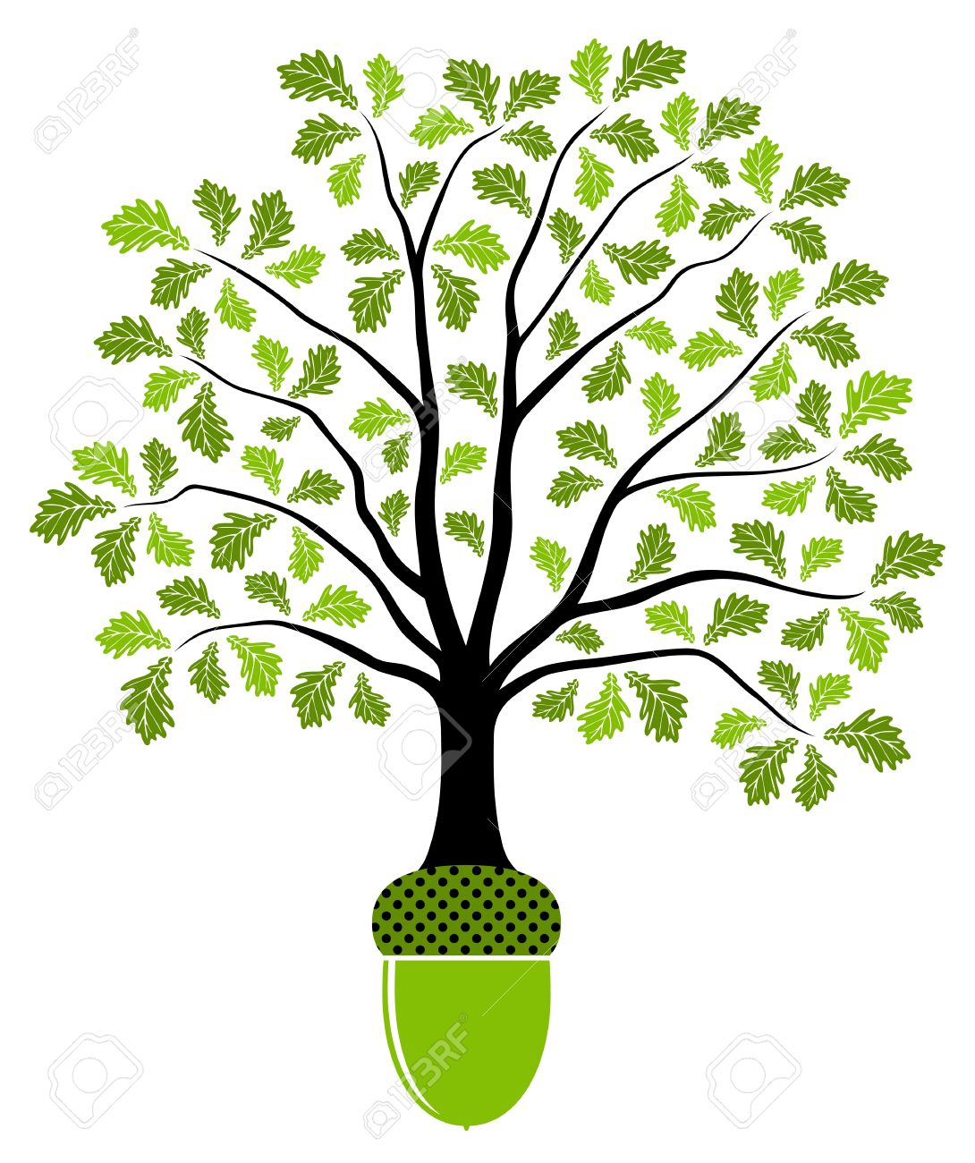 vector oak tree growing from acorn isolated on white background rh 123rf com vector oak tree with roots free vector oak tree