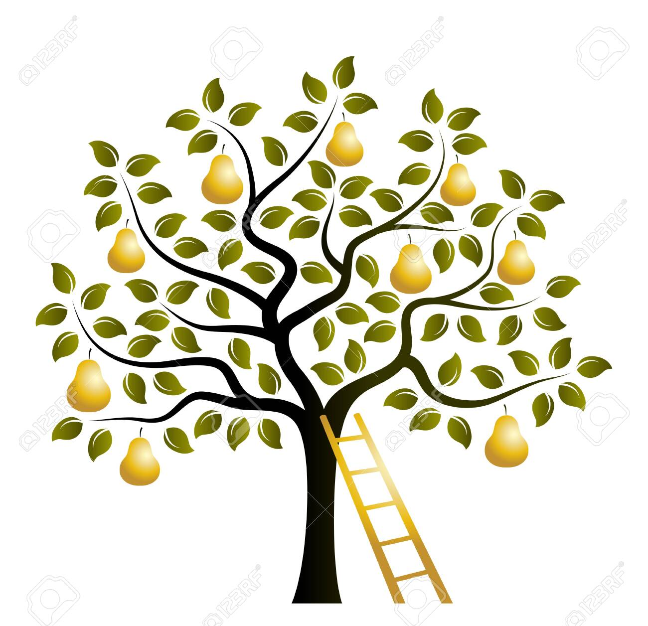 vector pear tree with golden pears and ladder isolated on white background - 122662038