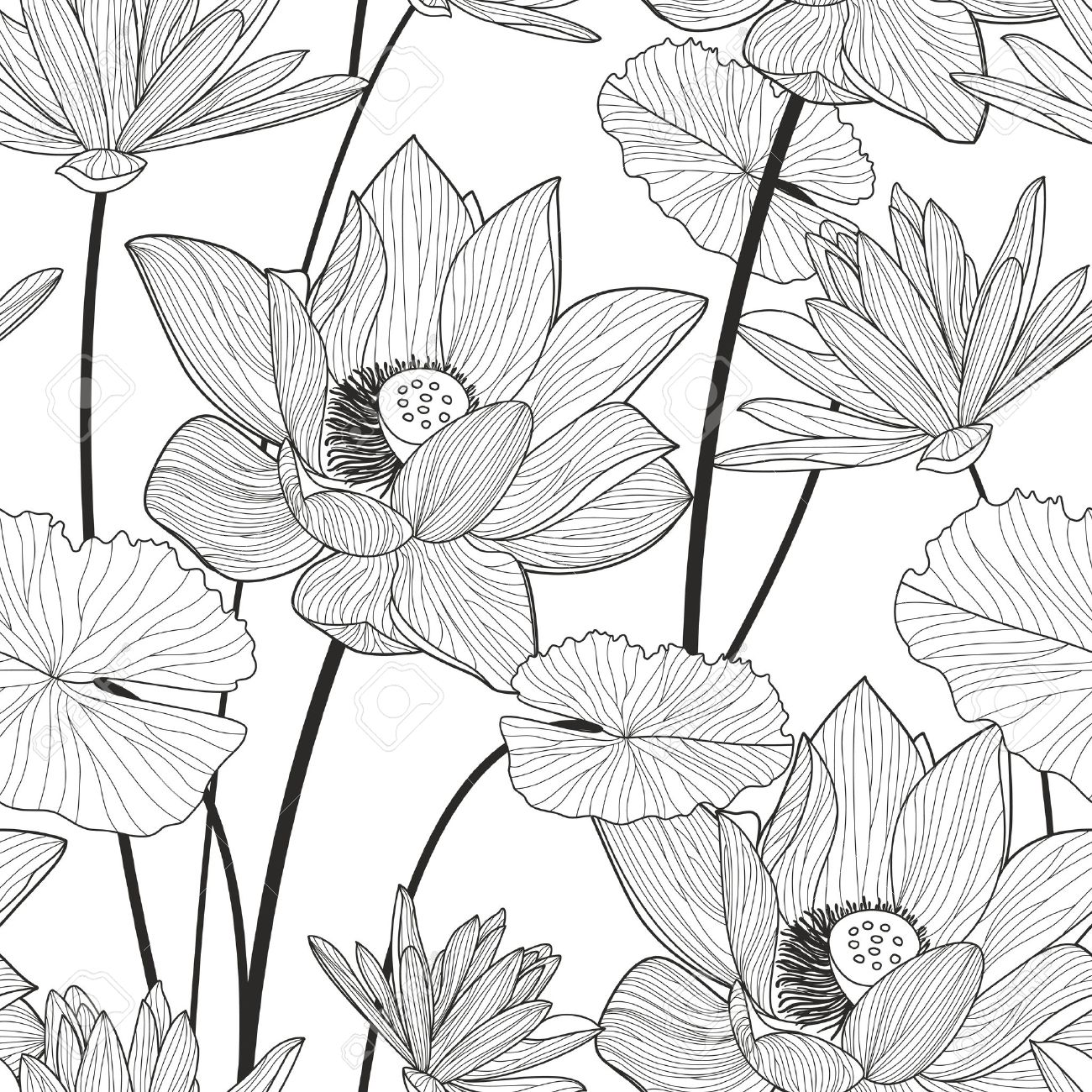 Vector seamless pattern with beautiful lotus flower black and white banco de imagens vector seamless pattern with beautiful lotus flower black and white floral line illustration background izmirmasajfo