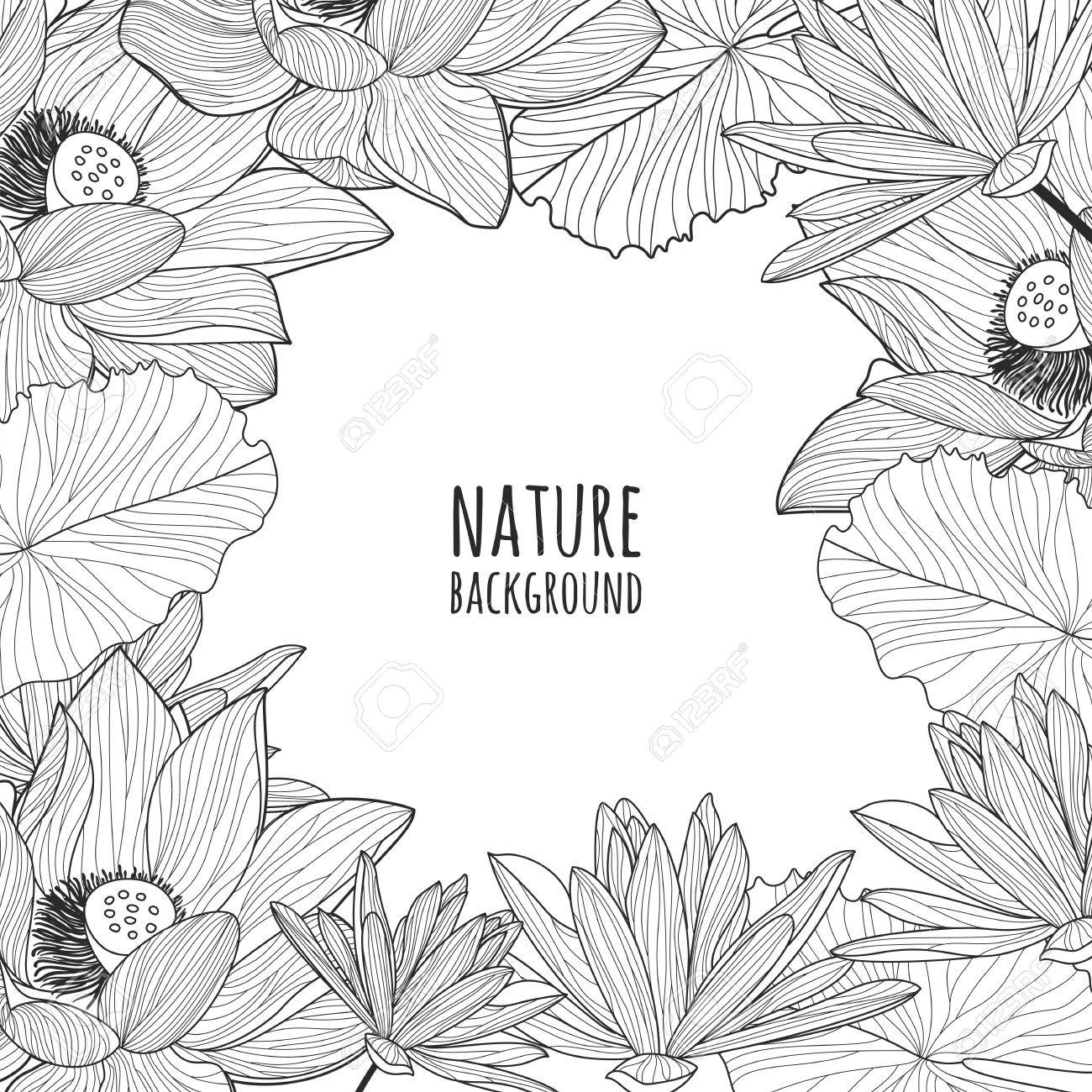 Vector Square Frame With Hand Drawn Lotus And Lily Flowers Black