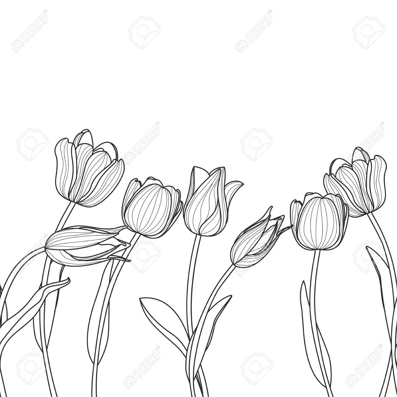 Floral Seamless Horizontal Pattern Black And White Elegant