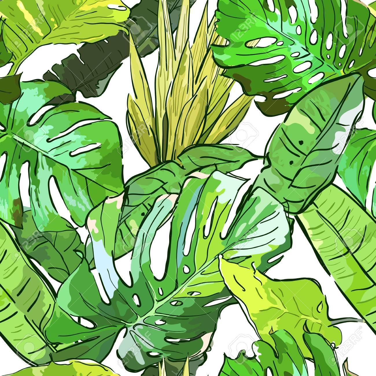 Vector Verde Selva Patrón Transparente. Verano De Fondo Con Hojas ...