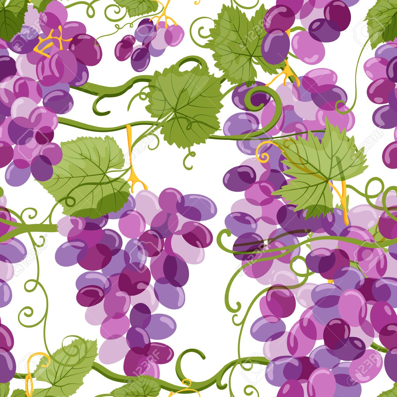 Vector grapes seamless pattern. Vineyard hand drawn illustration on white background. Fresh hand drawn grape with green leaves. Design elements for wine label or packaging. - 95631402