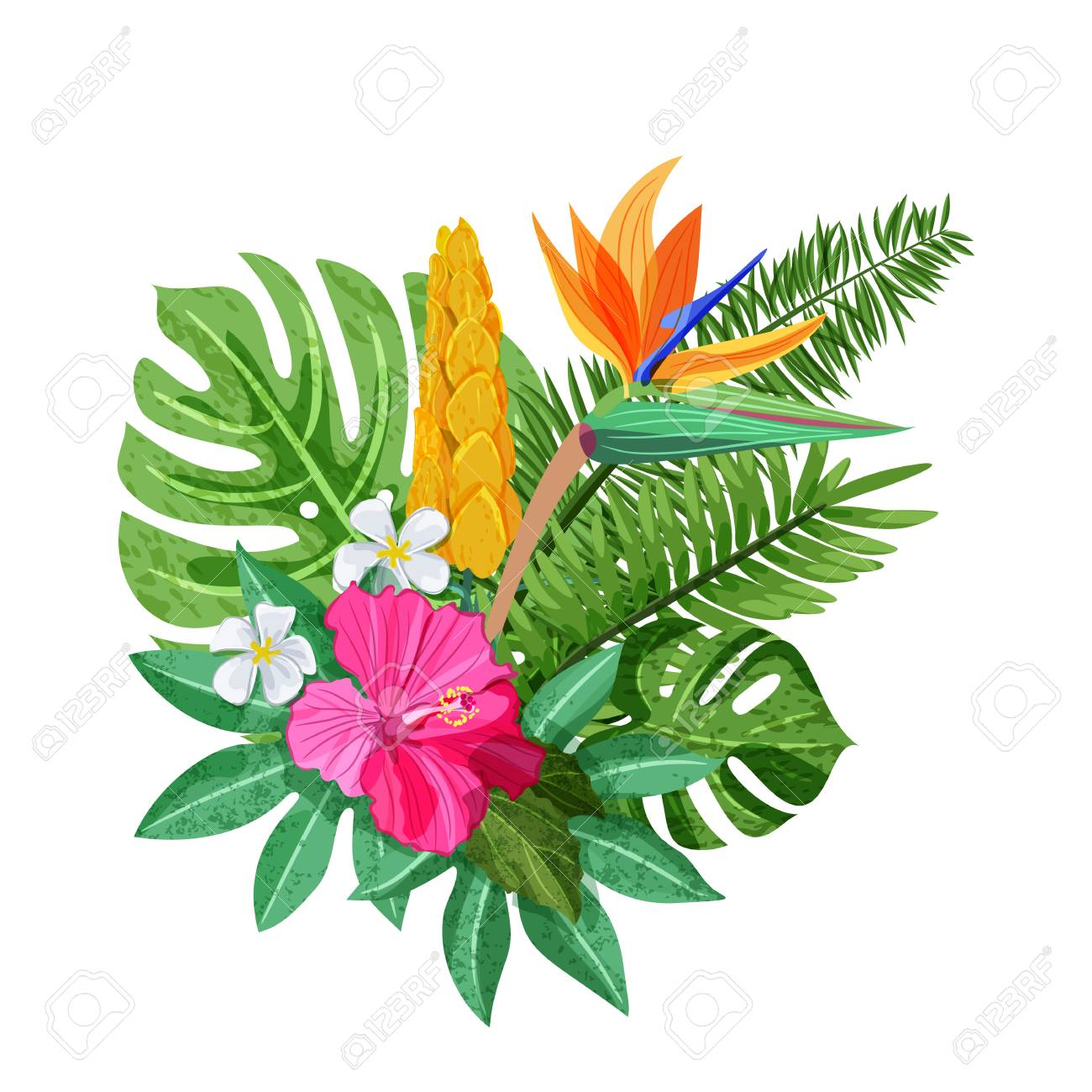 Tropical Bouquet With Exotic Flowers Hibiscus, Plumeria, Strelitzia ...