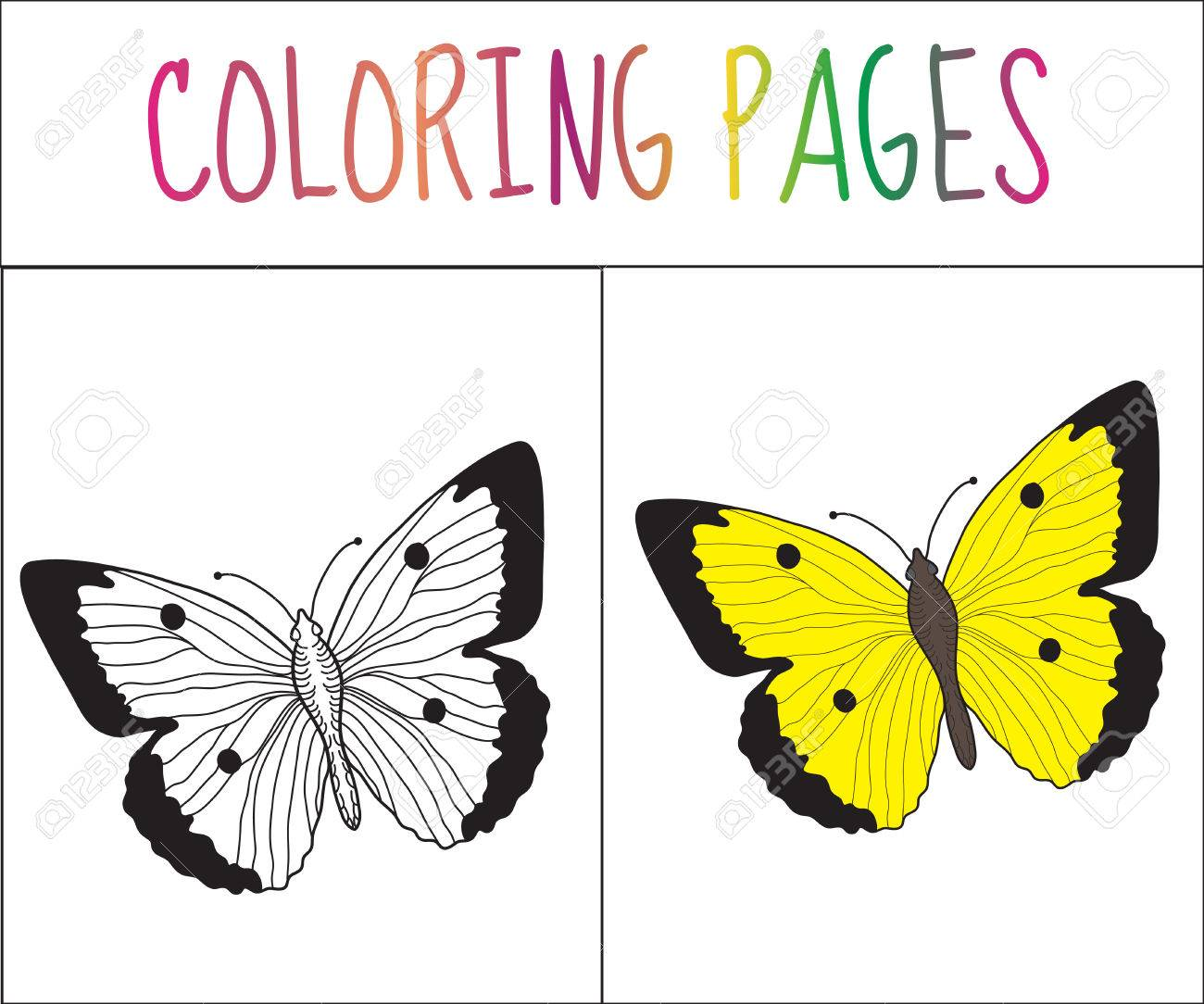 Coloring Book Page Butterfly Sketch And Color Version For Kids Vector