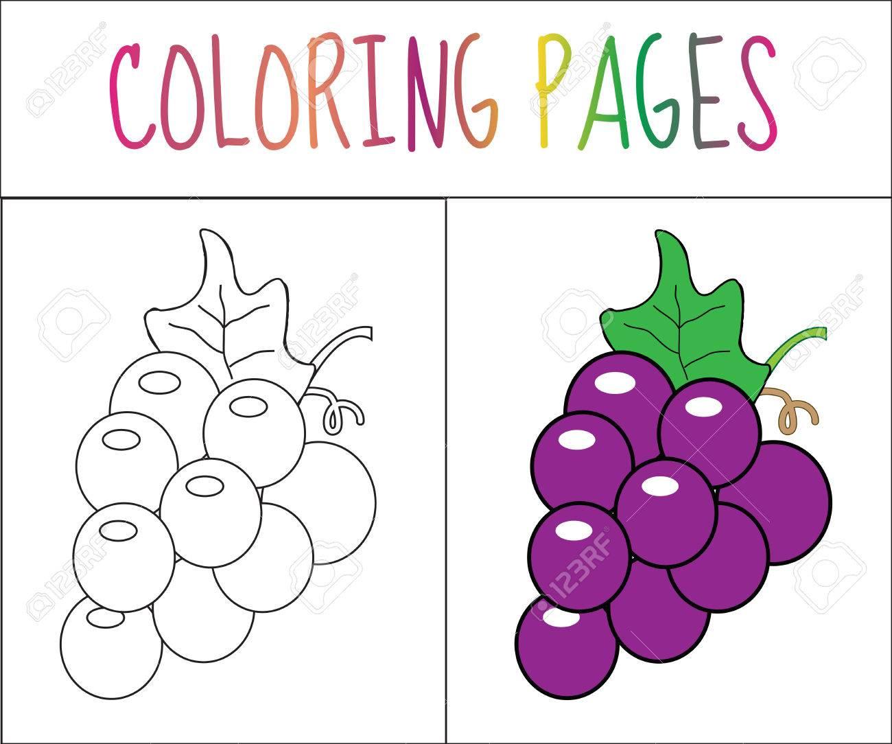 Colorear Página Del Libro Uvas Croquis Y Versión En Color Dibujos Para Colorear Para Niños Ilustración Vectorial