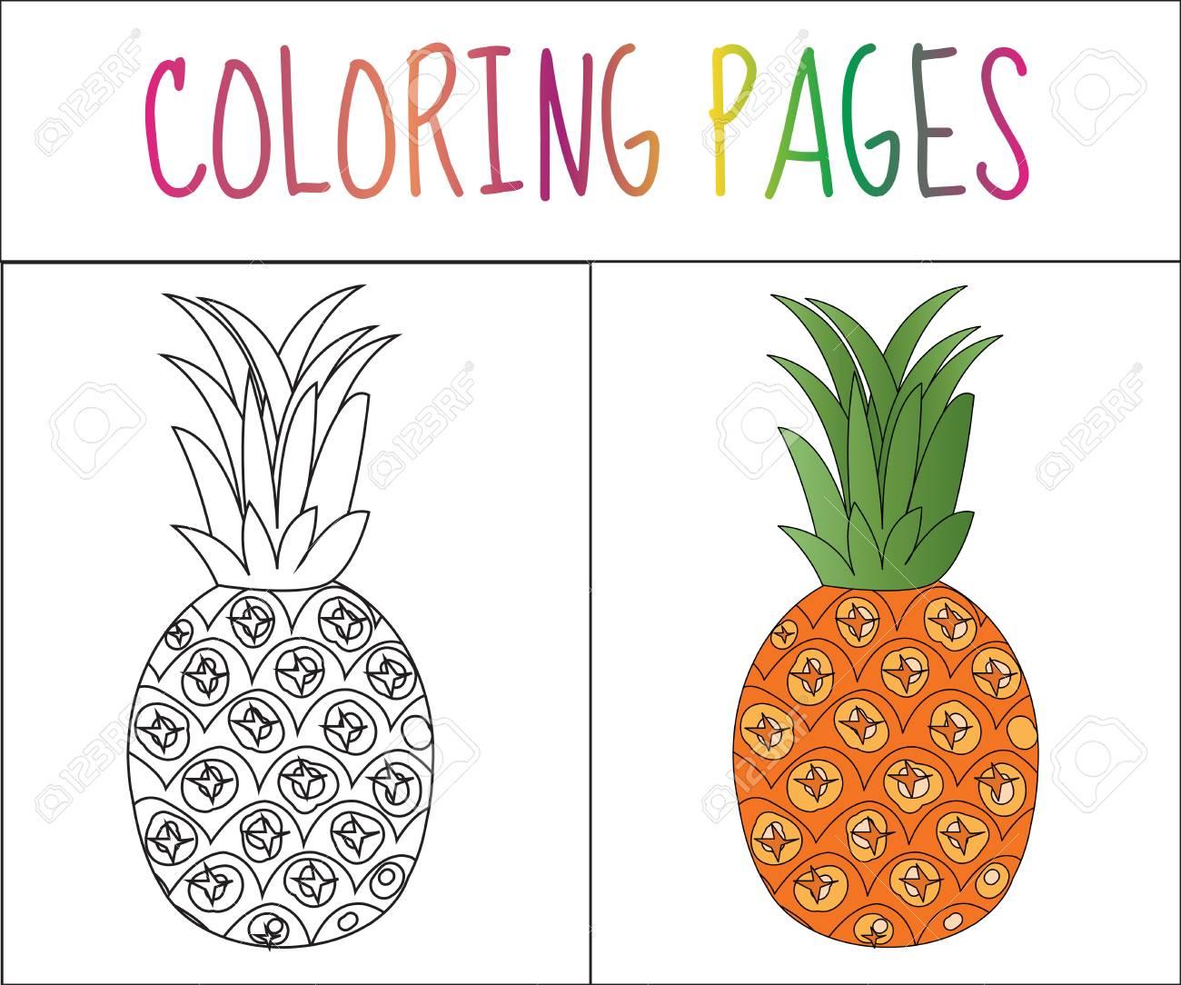 Colorear Página Del Libro Piña Croquis Y Versión En Color Dibujos