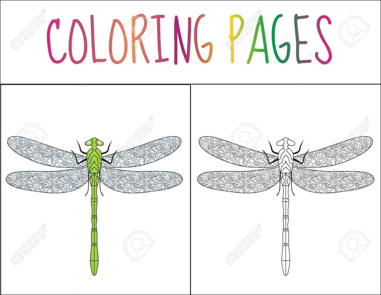 Colorear Página Del Libro. Libélula. Croquis Y Versión En Color ...
