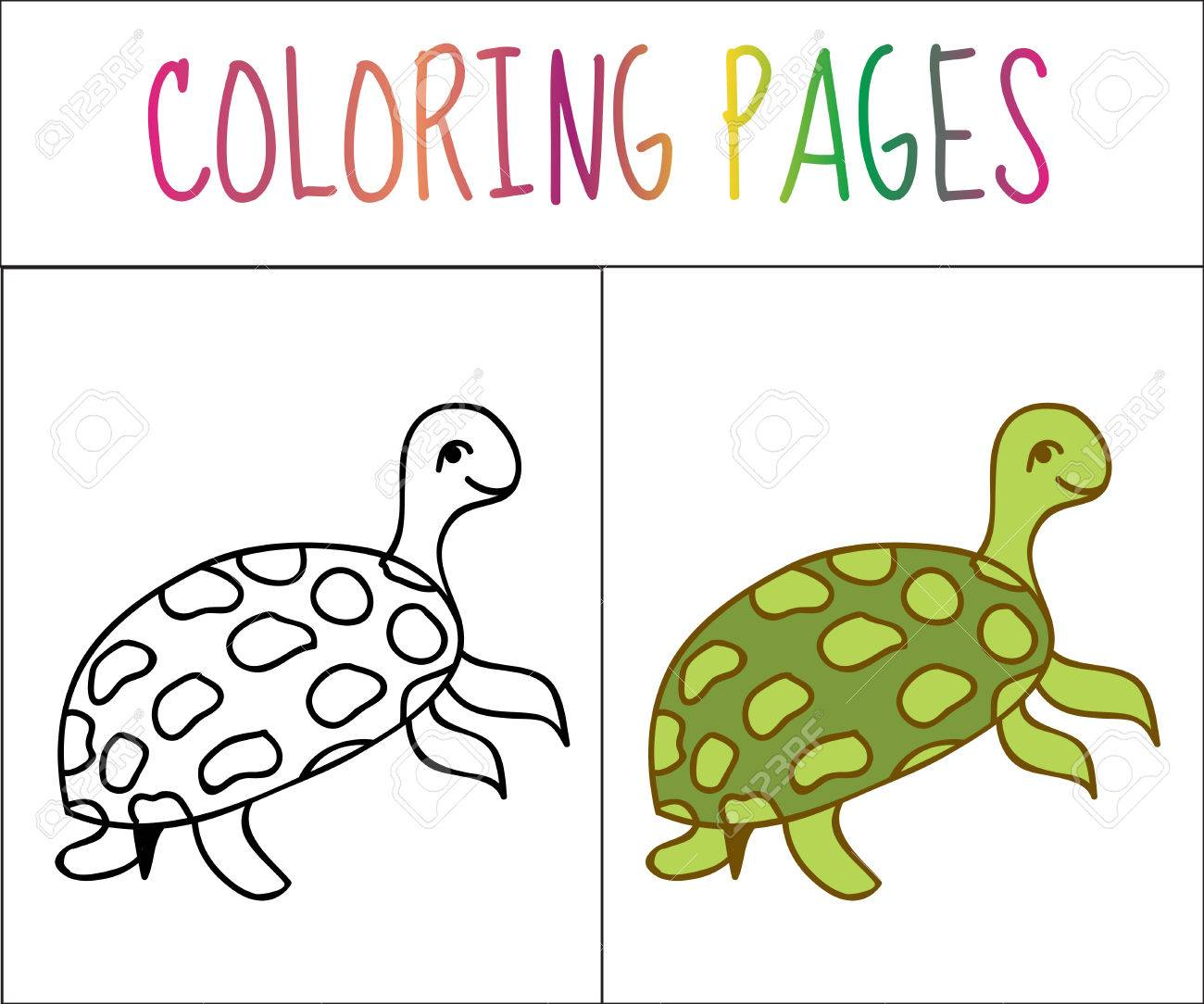 Libro De Colorear, Tortuga. Croquis Y Versión En Color. Dibujos Para ...