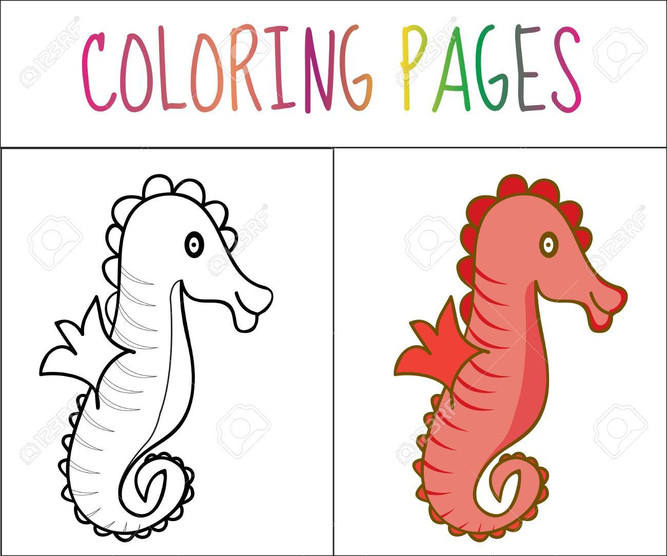 Libro De Colorear Caballito De Mar Croquis Y Versión En Color Dibujos Para Colorear Para Niños Ilustración Vectorial