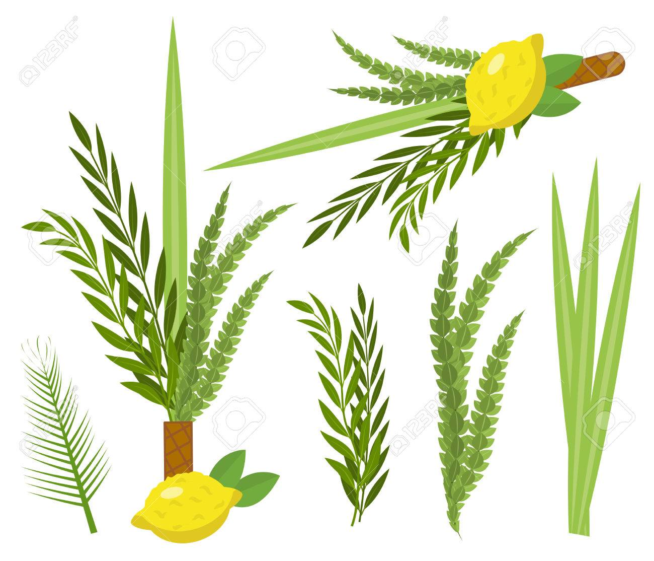 The Significance of Sukkot