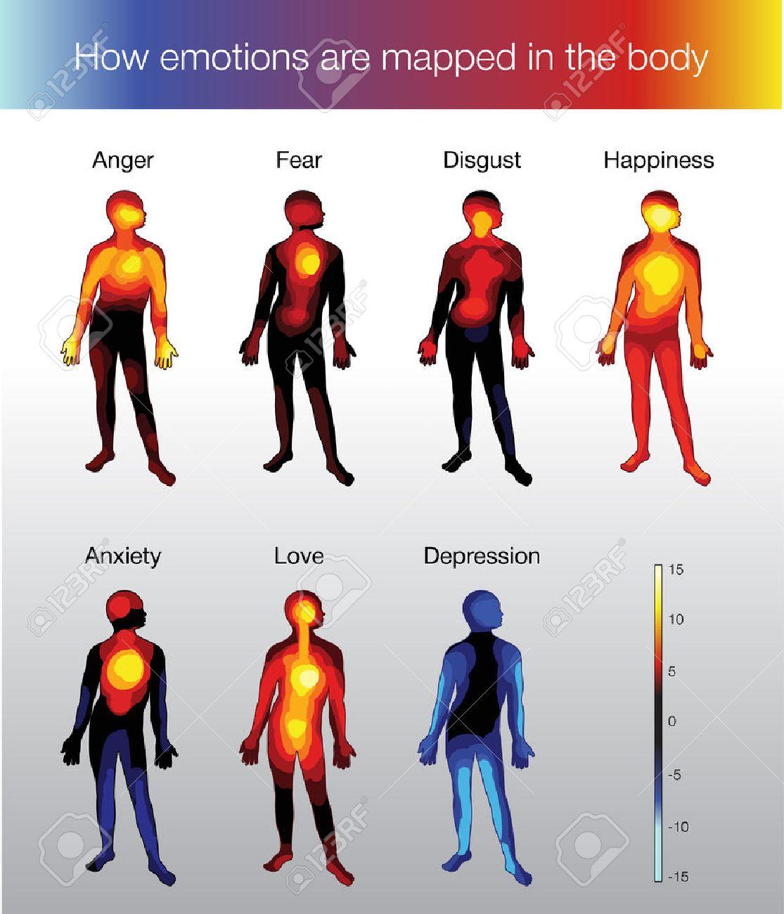 Mapa De Calor Del Cuerpo Humano, Dependiendo De La Emoción ...