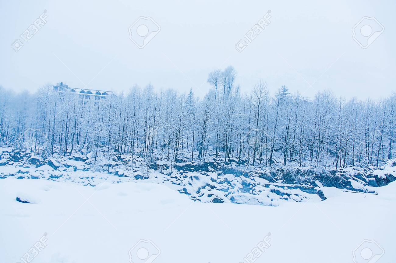 Beautiful winter landscape with forest , trees and rive covered with white snow, snowfall in Himalayan mountains - Image - 153608782