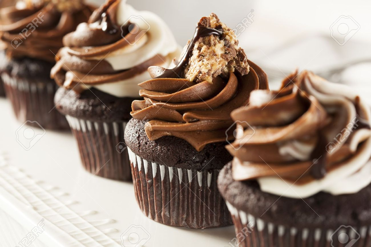 Chocolate Cupcakes Stock Photos & Pictures. Royalty Free Chocolate ...