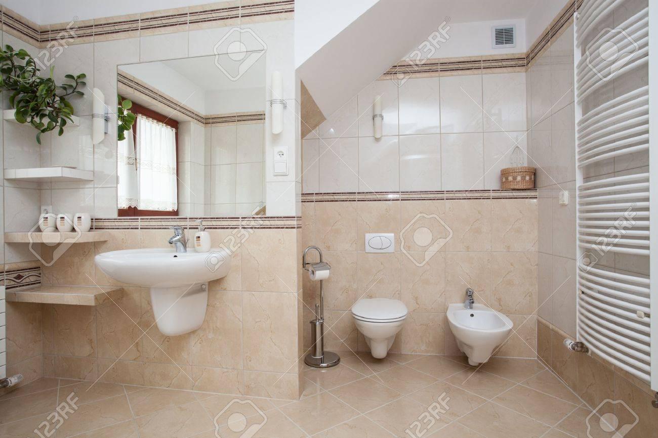 Große, Geräumige Badezimmer Interieur, WC Und Bidet Lizenzfreie Bilder  16643819