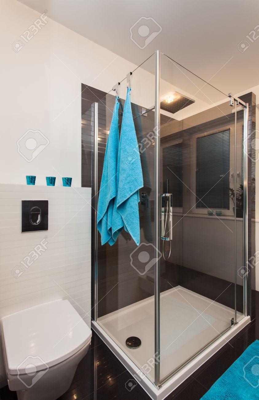 Minimalist apartment - modern bathroom with a glass shower Stock Photo - 17288516