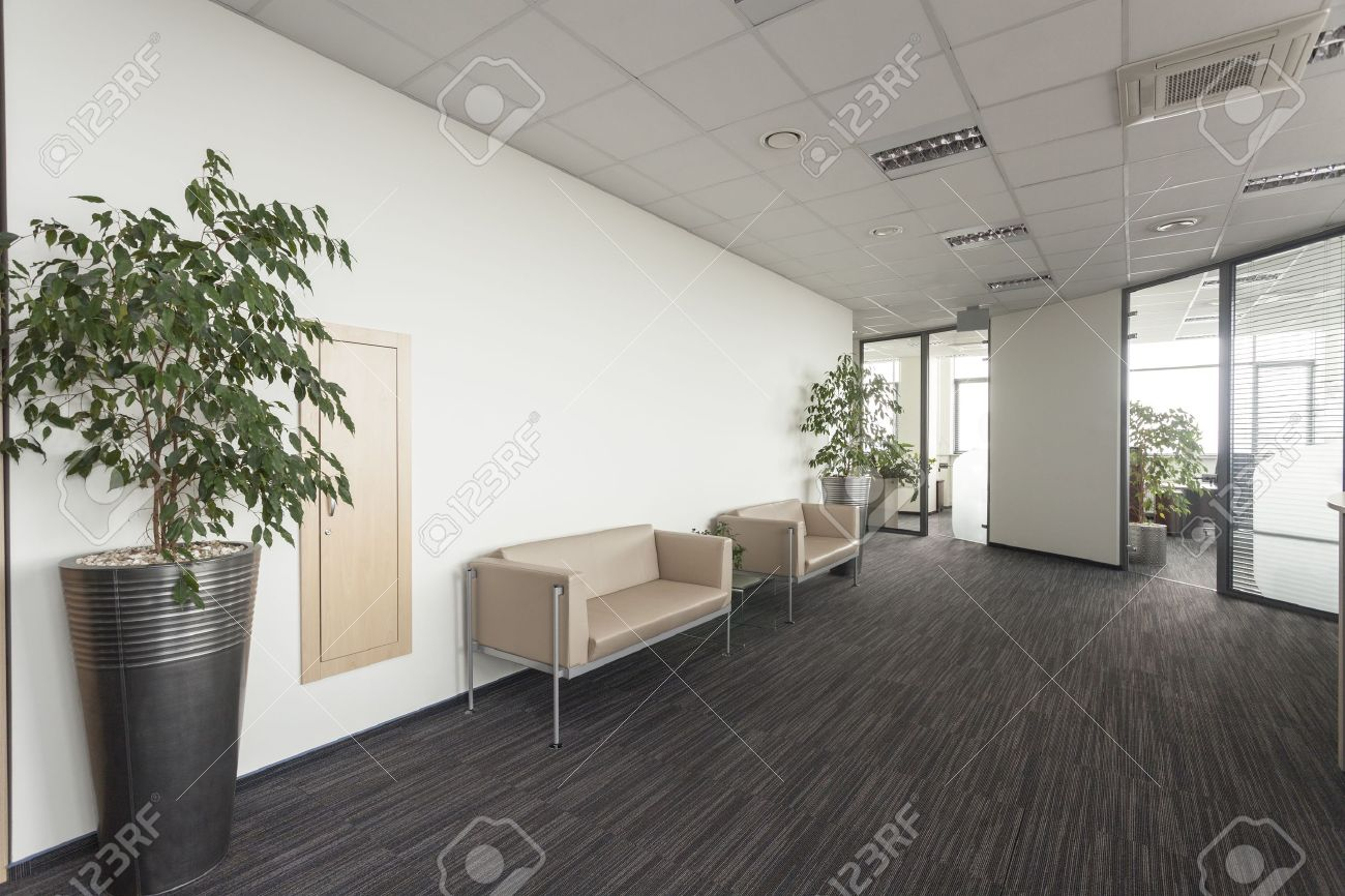 Innenraum Eines Modernen Buro Flur Mit Zwei Schlafsofas Lizenzfreie