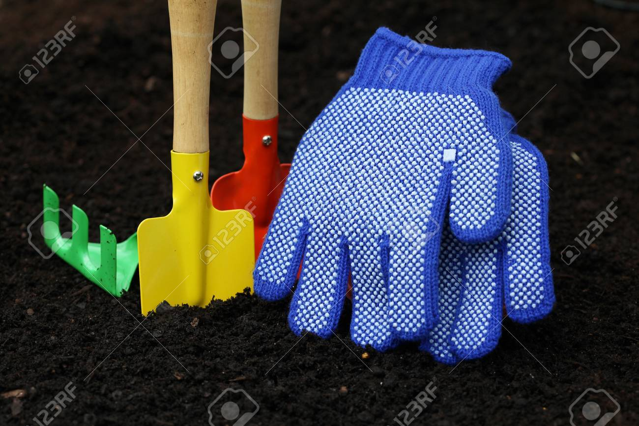 Set of colorful accessories for planting in garden Stock Photo - 20994509