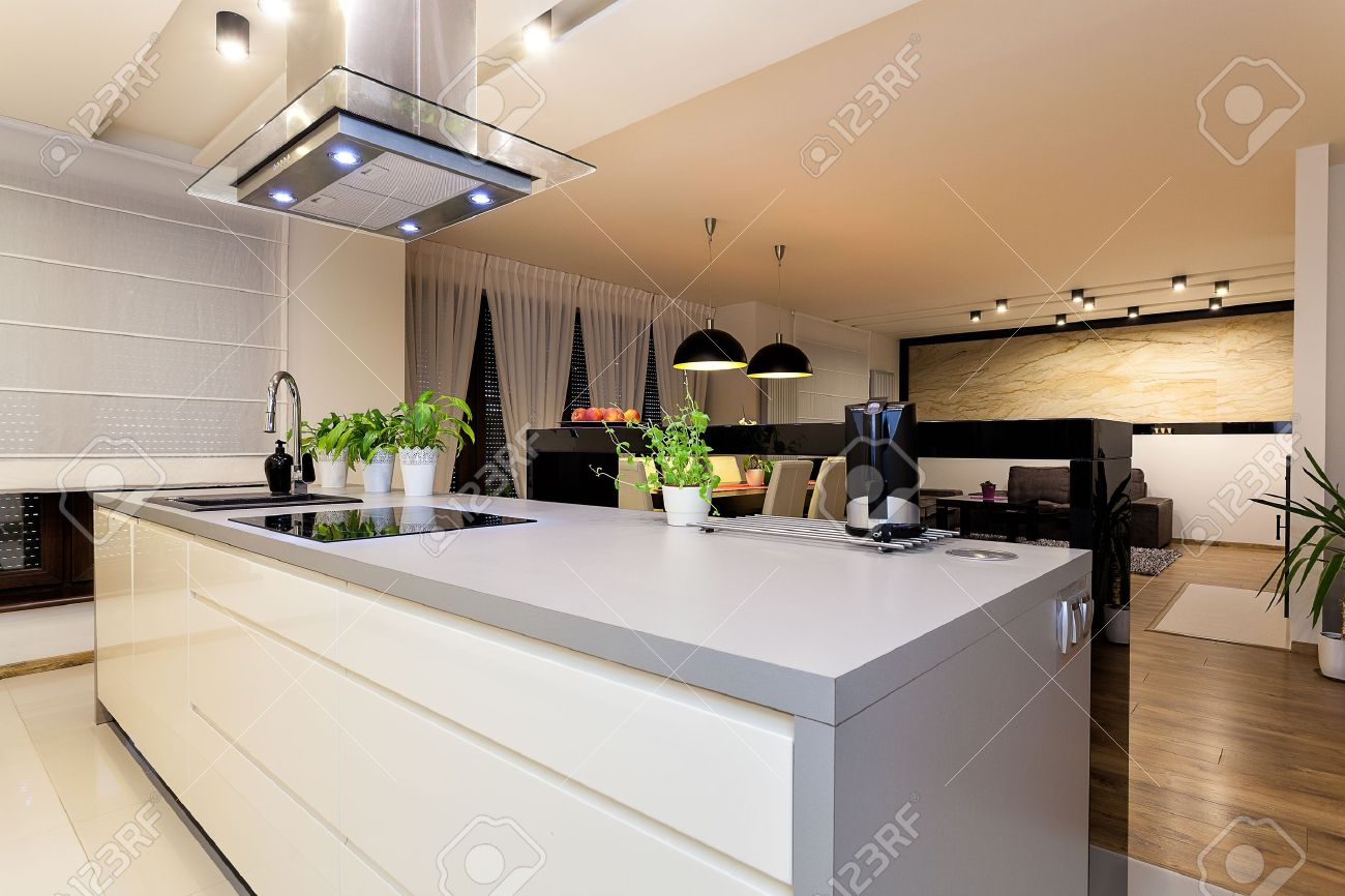 Urban apartment - White furniture in a modern kitchen