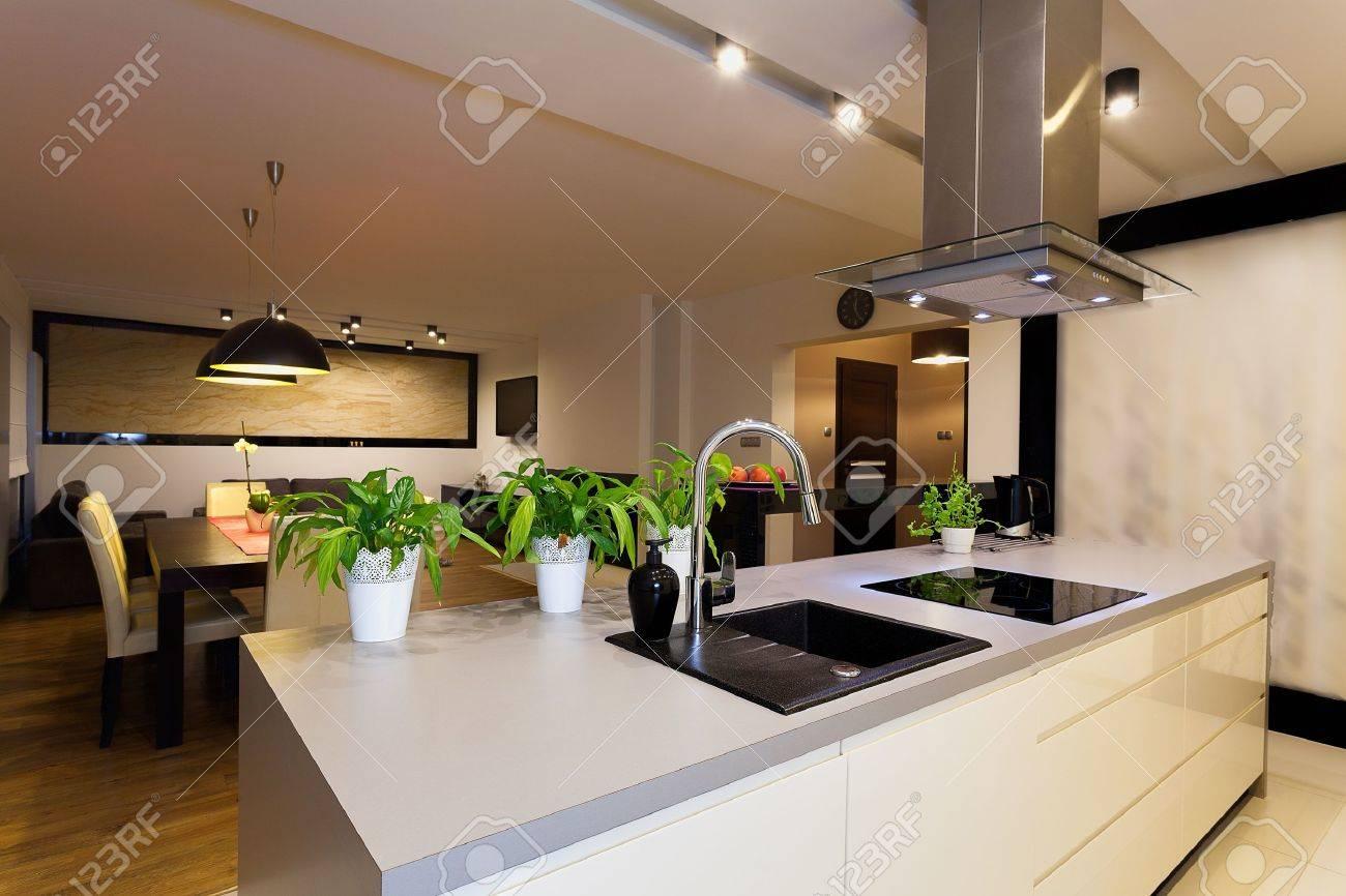 Urbano Appartamento - Bancone Della Cucina Bianca Con Le Piante ...