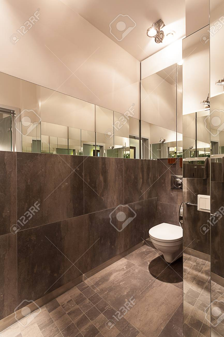 Vertical view of a gray toilet, modern interior Stock Photo - 23411906