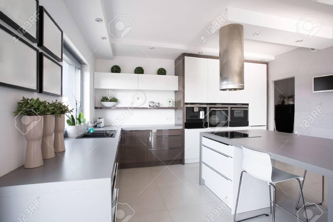 Piante D\'appartamento In Cucina Esclusiva In Stile Moderno Foto ...