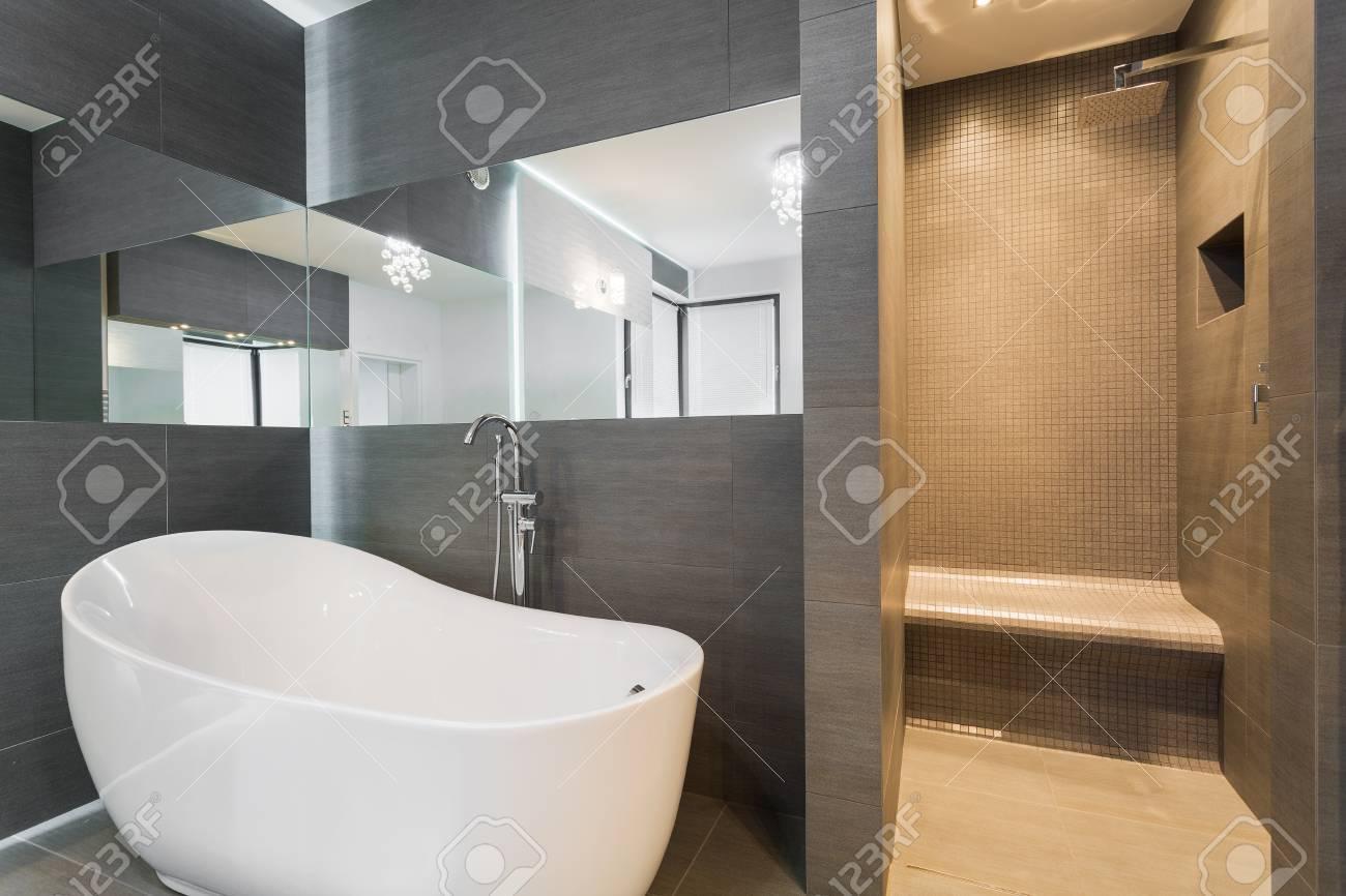Salle de bains moderne avec baignoire et douche dans la résidence riche