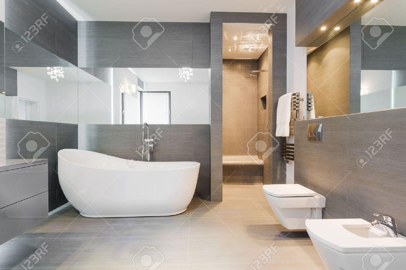 Designed Freestanding Bath In Gray Modern Bathroom Stock Photo ...