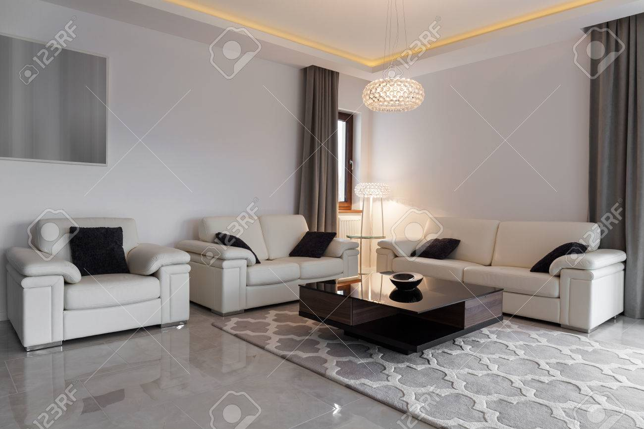 White Leather Furniture In Elegant Modern Lounge Stock Photo  # Muebles Sunnies