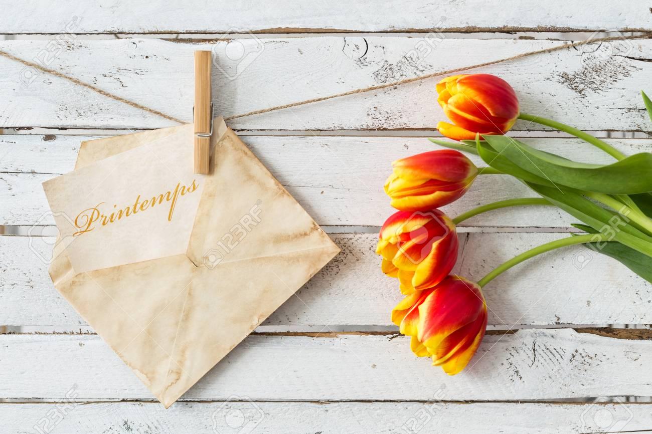 tulpen hängen
