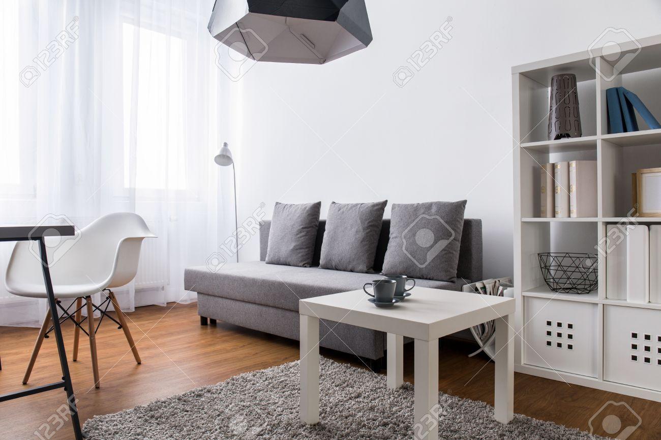 Sehr Helle Zimmer In Einer Modernen Wohnung Mit Grauem Sofa Grossen